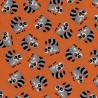 Orange Racoons