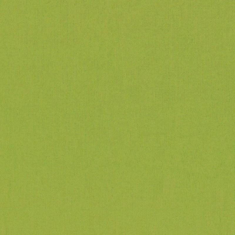 BRIGHT KIWI-Peppered Cotton-64 STUDIO E - 1