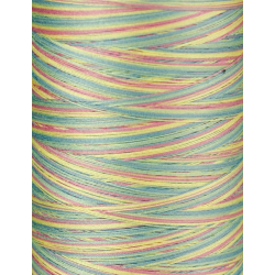 1901 IRIS ULTRA COTTON QUILTING THREAD - PASTELLE