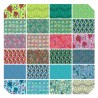 NATURAL BEAUTY-AMY BUTLER - LAYER CAKE-42 pieces